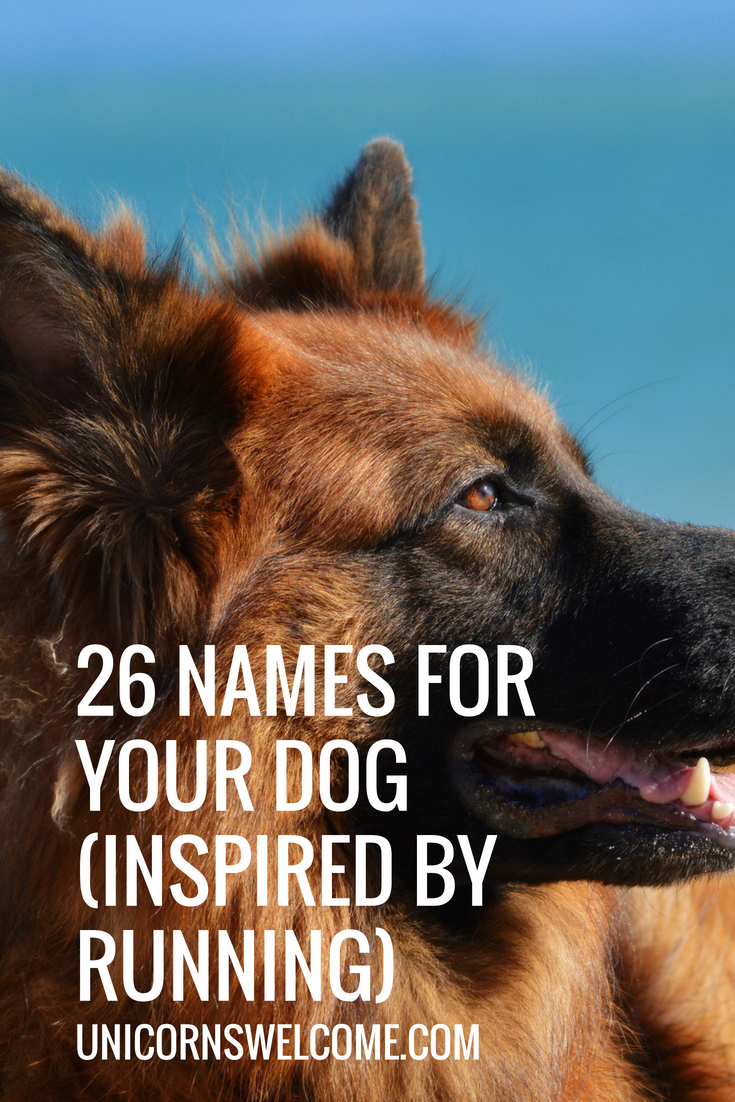 26 Names for your dog (inspired by running).jpg